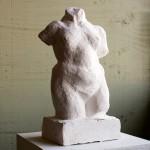 torso plaster cast